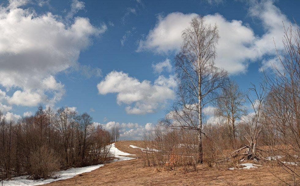 весна, Владимир Кириченко (vlkira)