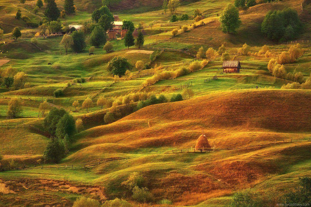 карпаты, горы, склоны, лучи, вечер, луг, закат, сентябрь, Гвоздицкий Алексей