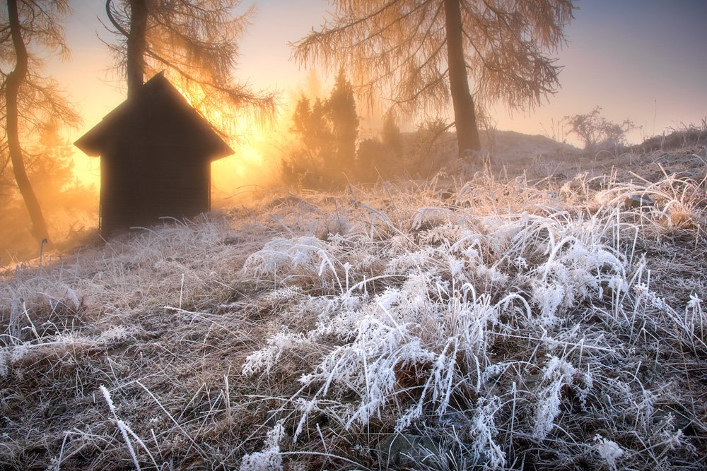 home,landscape,poland,sunrise,autumn,winter,forest,light, Marcin Kesek