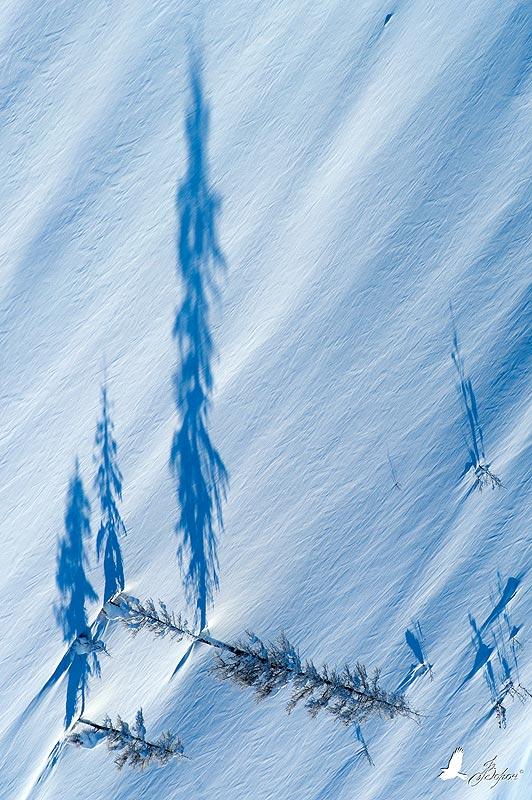 зима, весна, магадан, колыма, север, деревья, гора, склон, тень, часы, время, трасса, Ворон