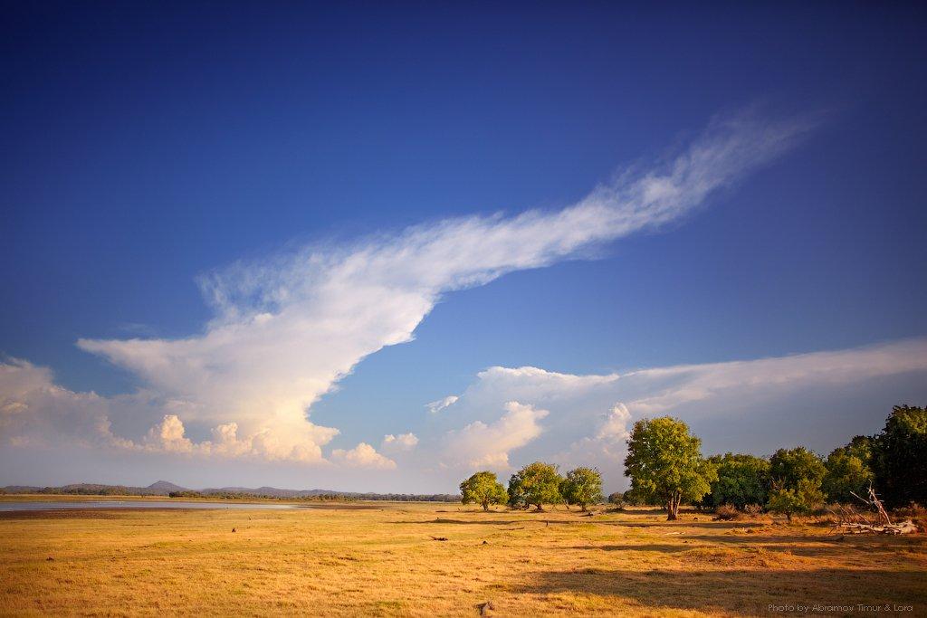 пейзаж, миннерия, облака, степь, шри-ланка, цейлон, Лора