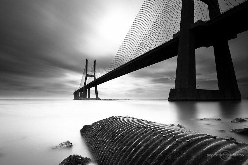 ponte vasco da gama, parque expo, lisboa, rio tejo, tagus river, Pedro Carmona Santos