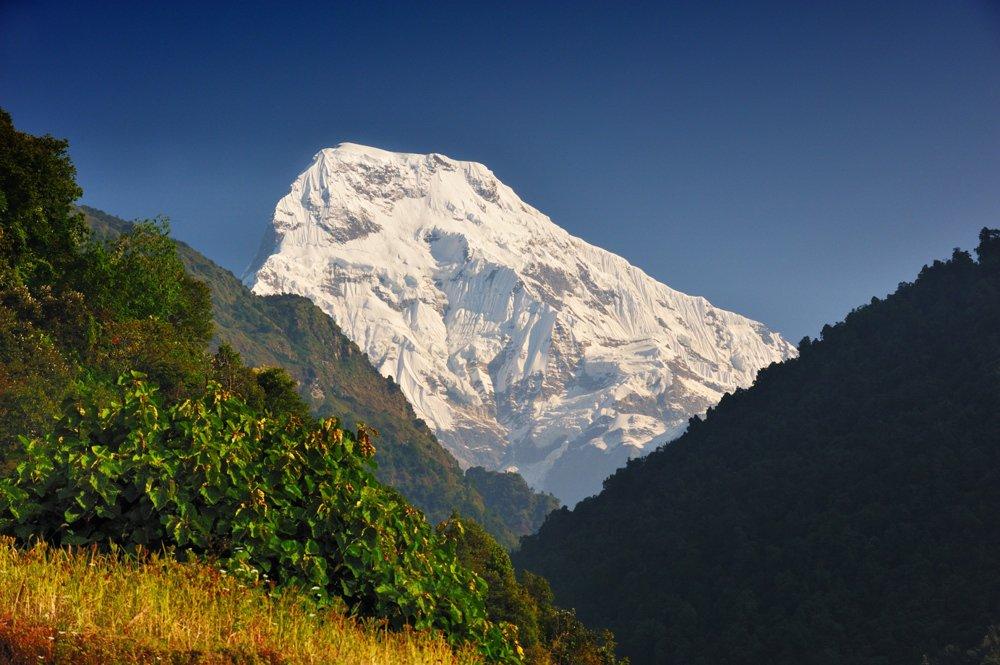 anapurna, hymalaya, nepal, south, mountain, high, mountaineering, Vasiliy Ganzha