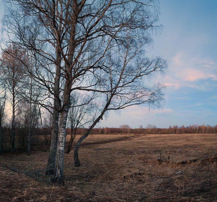 весенний, вечер, в, поле, Владимир Кириченко (vlkira)