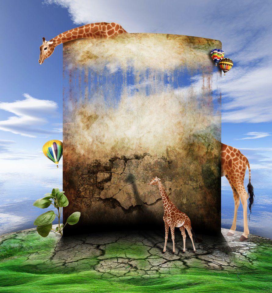 giraffe, Детеныш