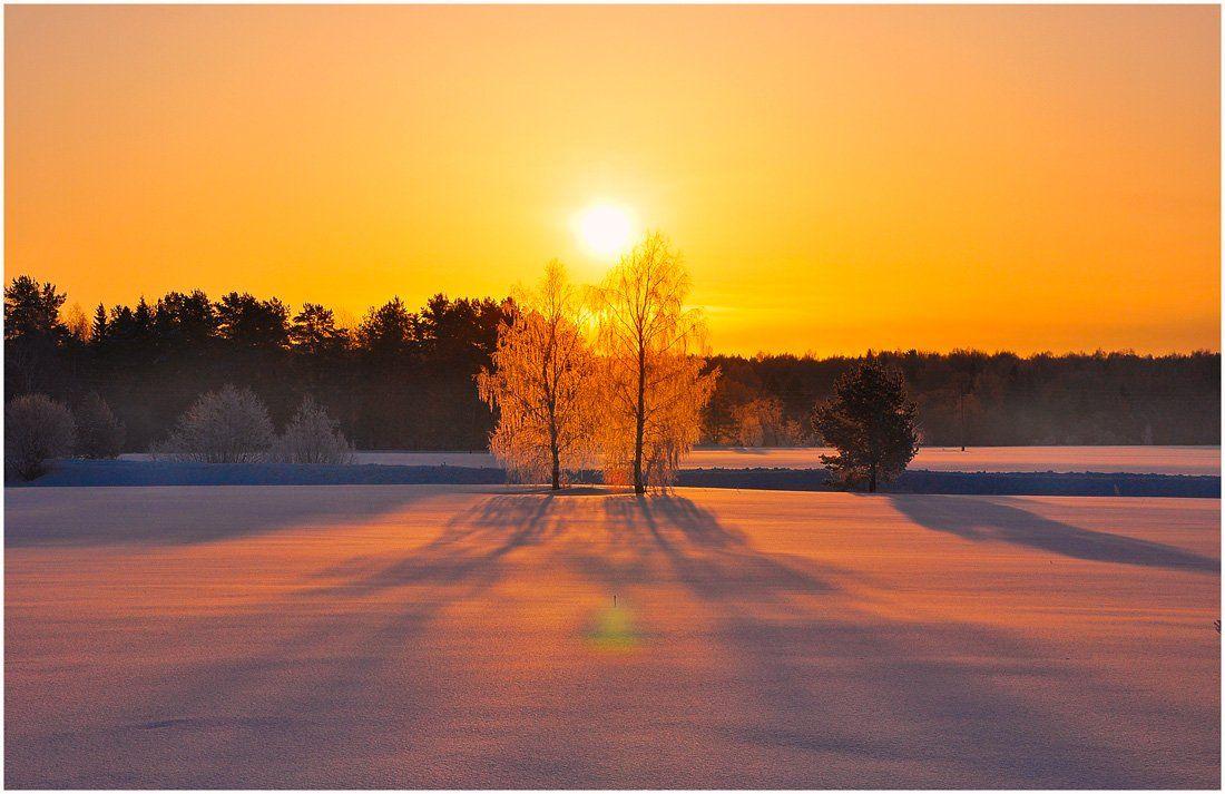 утро,иней,пейзаж,солнце,рассвет,двое,зима,золотой рассвет, АНДРЕЙ LOZHKIN