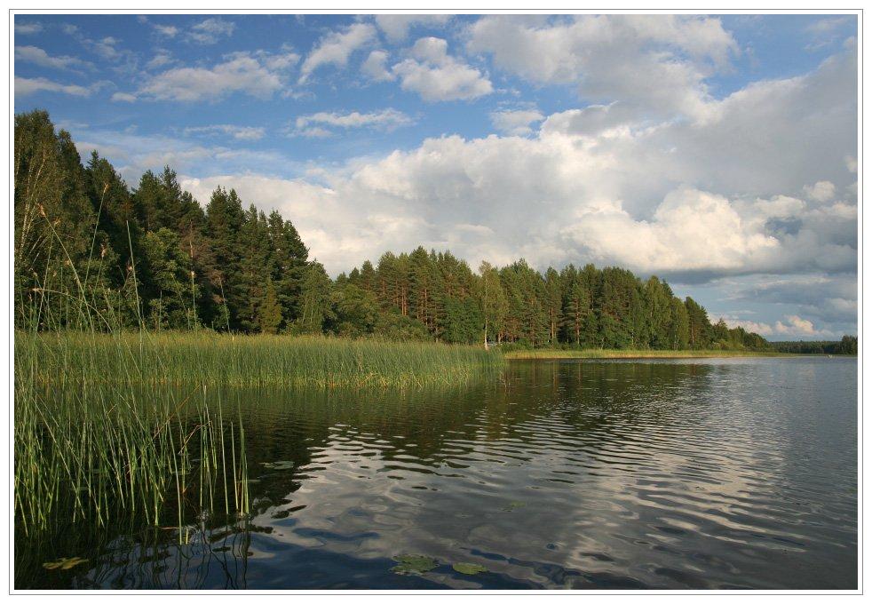 озеро, селигер, вечер, рыбалка, Алексей Самарин