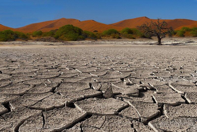 намиб,намибия,пустыня, fotomafia