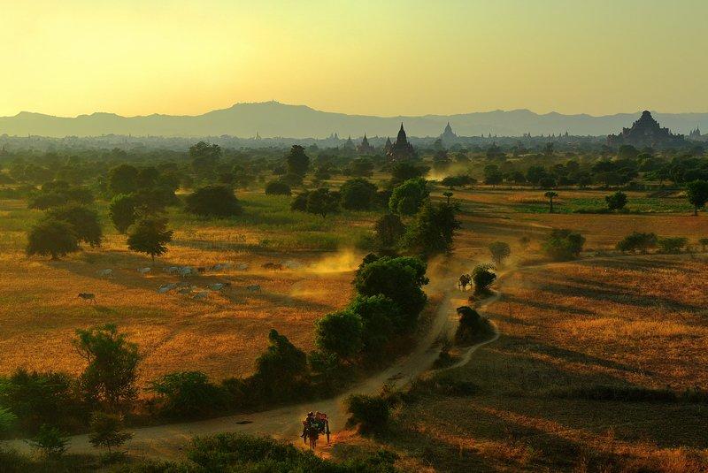бирма баган, fotomafia