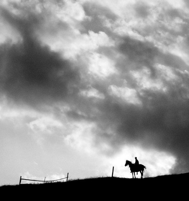 карпаты, всадник, лошадь, Piligrim