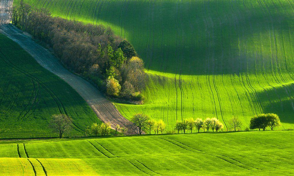 marcinkesek, landscape, springs, fields, moravia, slovakia, light, forest, Marcin Kesek