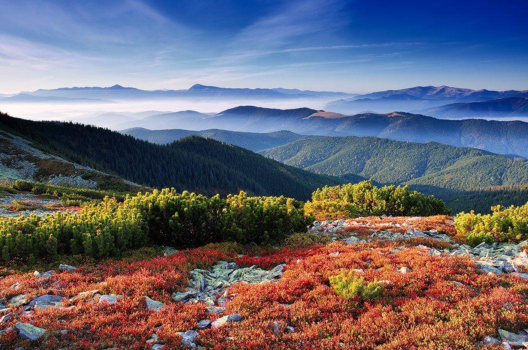 карпаты, горы, осень, черногора, горганы украина, Leonid Tit