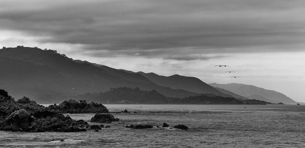 monterey, california, pacific, ocean, rocks, birds, fly, away, Михаил Кристев