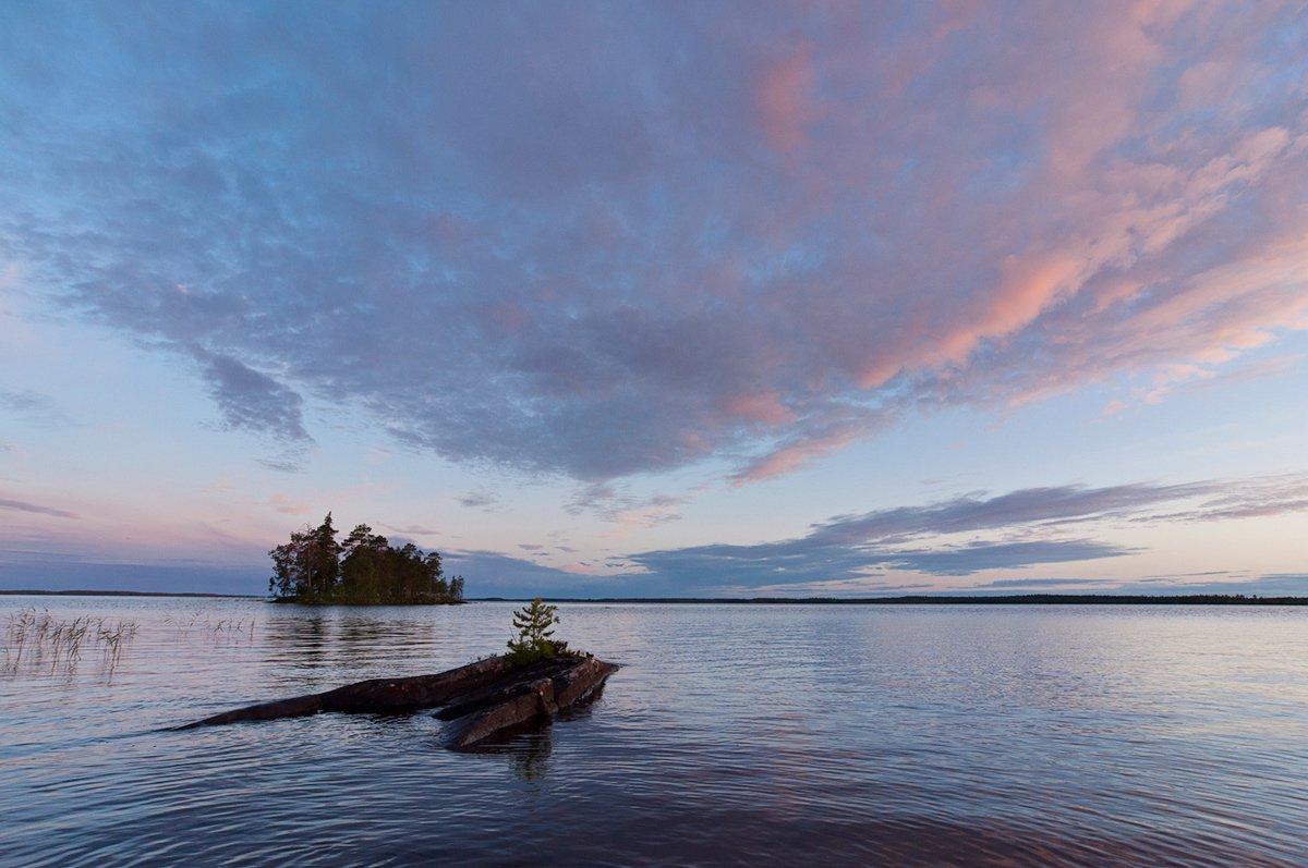 карелия, рассвет, озеро, вода, пейзаж, природа, Динара