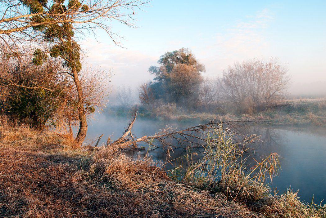 утро, речка, туман, sa56