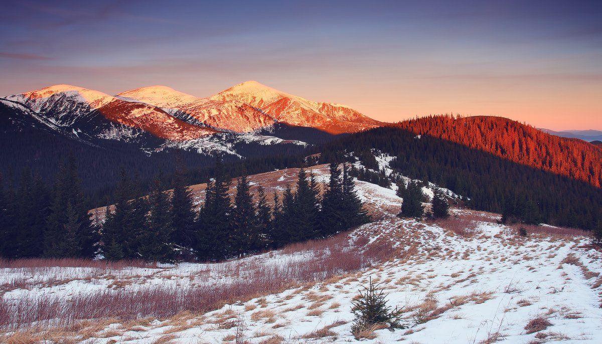 карпаты, горы, , украина, черногора, снег, говерла, утро, Leonid Tit
