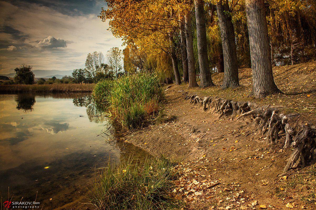 lake, bulgaria, lesichevo, forest, autumn, landscape, nature, cloud, vacation, tourism, nsirakov, Nikolay Sirakov