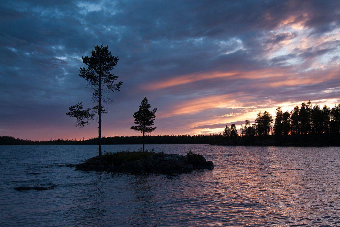 карелия, озеро, остров, закат, сосны, Динара