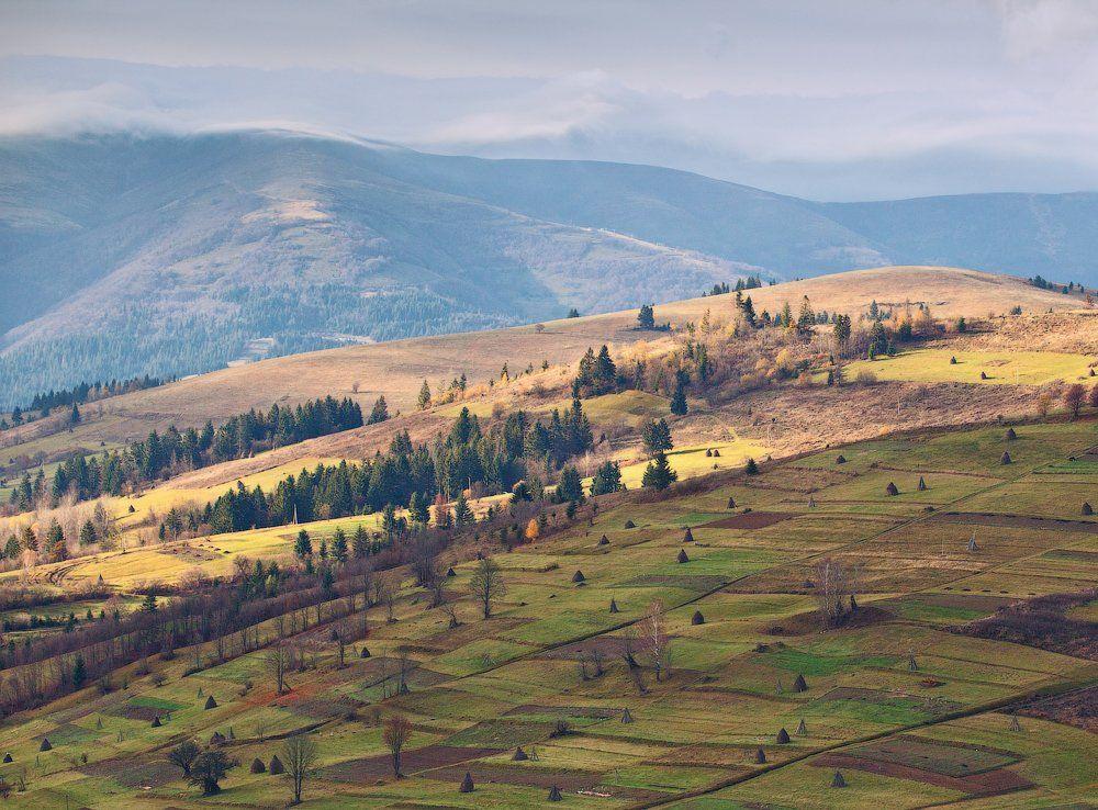 карпаты, осень, утро, свет, холмы, Андрей Радюк