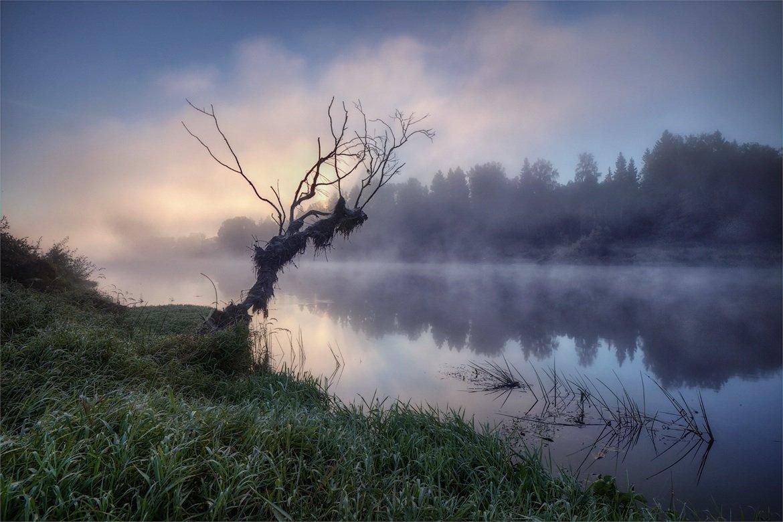 утро, туман, река, Сергей