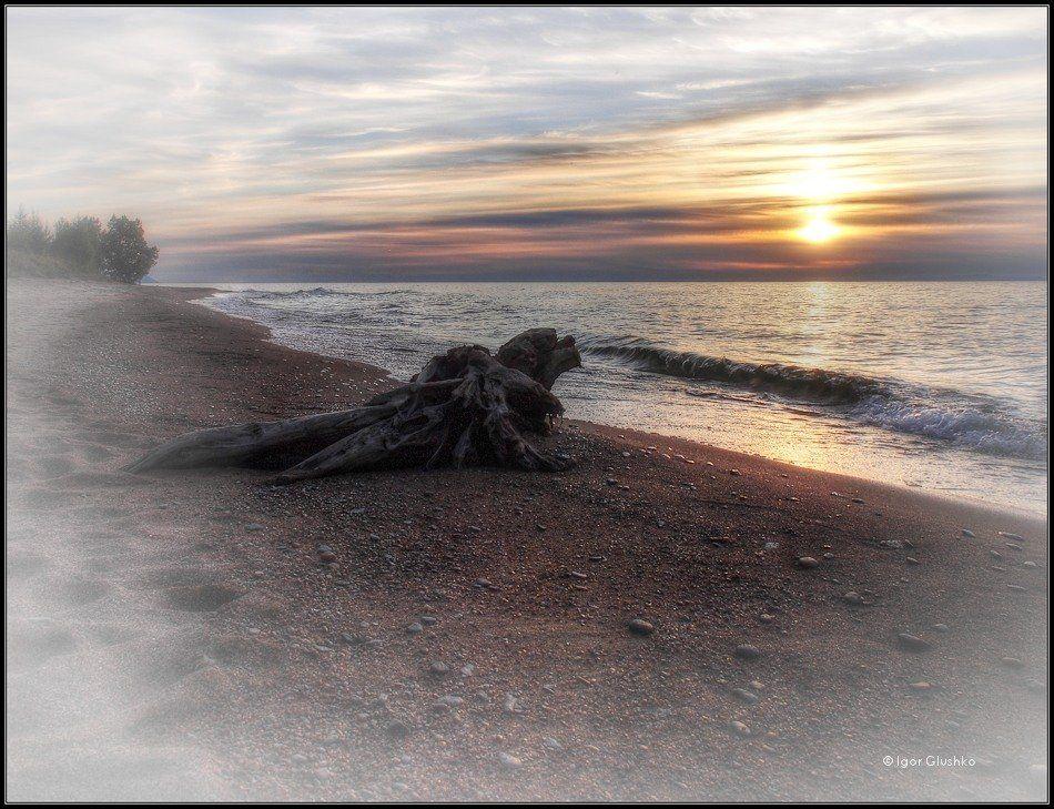 байкал, бурятия, берег, коряга, закат, Igor Glushko