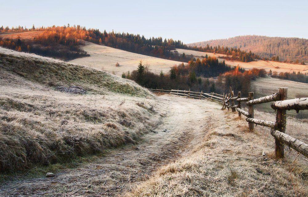карпаты, осень, утро, свет, лес, иней, Андрей Радюк