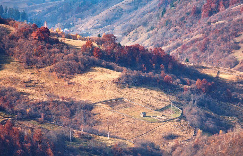 карпаты, осень, утро, свет, лес, огород, Андрей Радюк