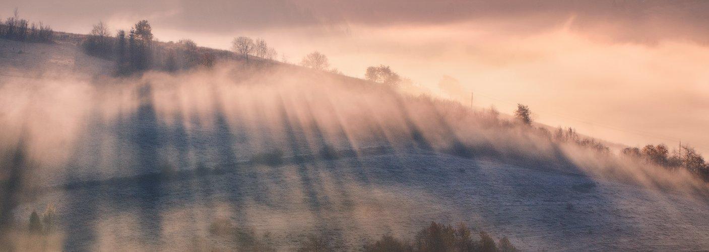 карпаты, осень, утро, свет, лес, туман, Андрей Радюк