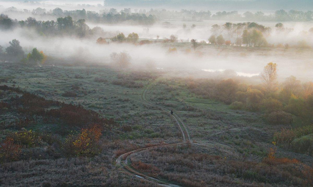 осень, туман, рыбак, рассвет., sa56
