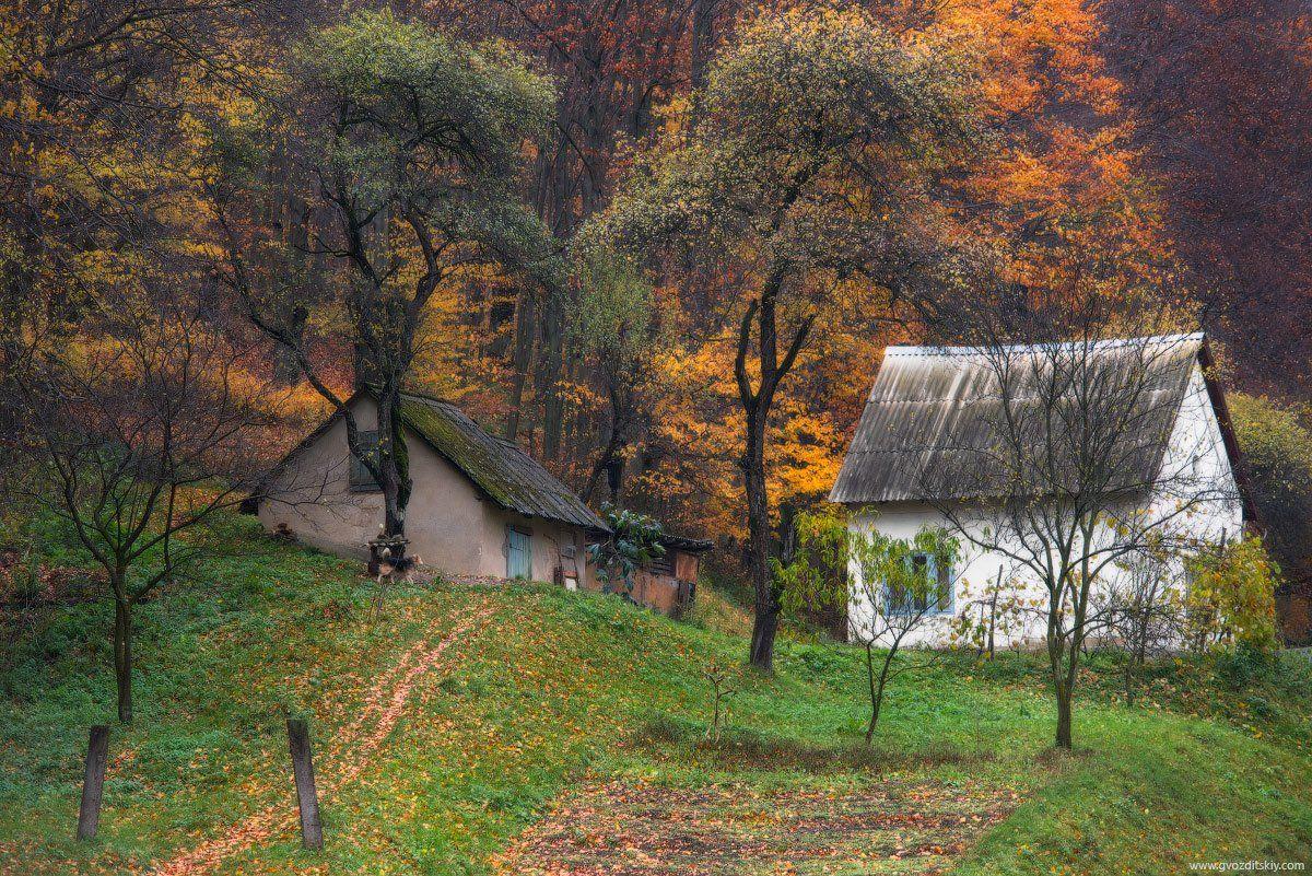 осень, ноябрь, карпаты, Гвоздицкий Алексей