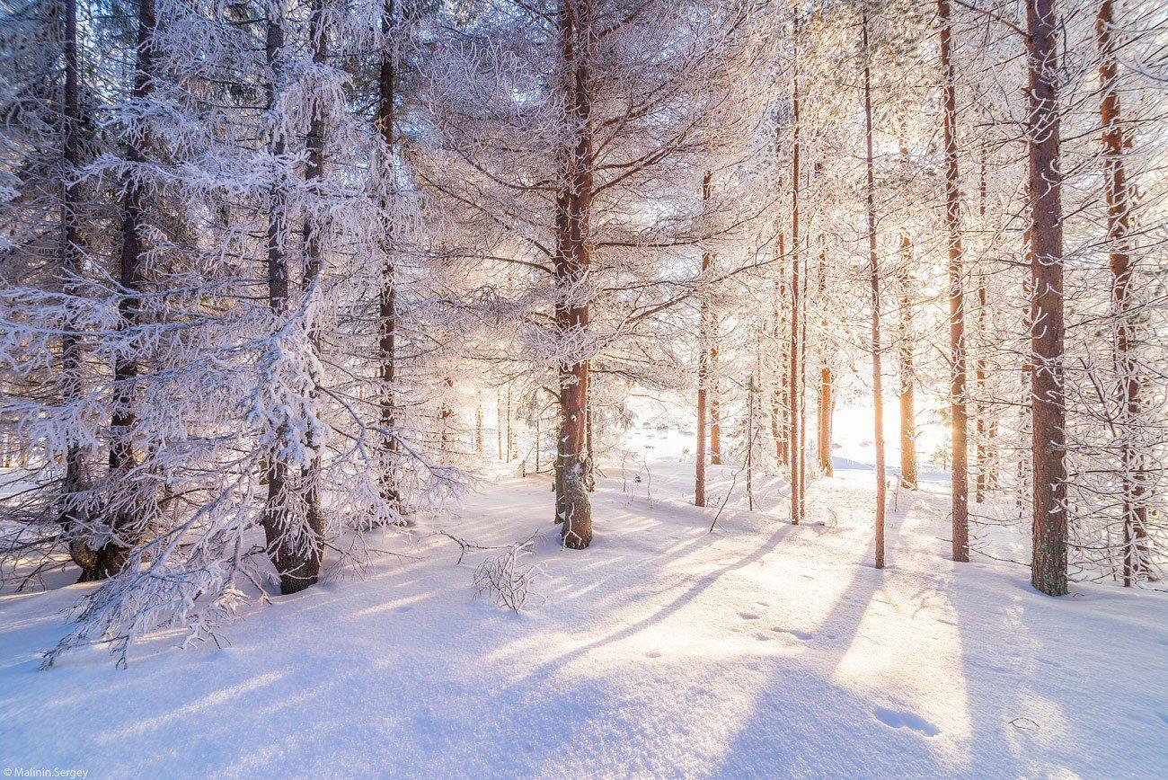 http://35photo.ru/photos_main/96/482510.jpg