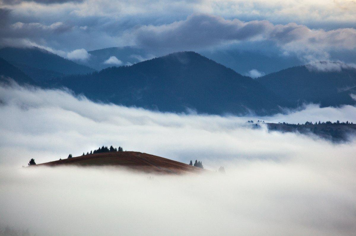 карпаты, утро, туман, Андрей Радюк