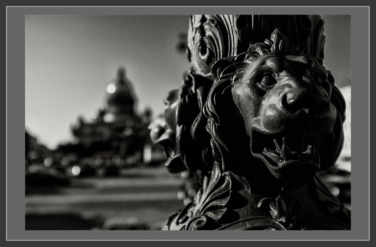 питер, санкт-петербург, исаакиевская площадь, Малыш