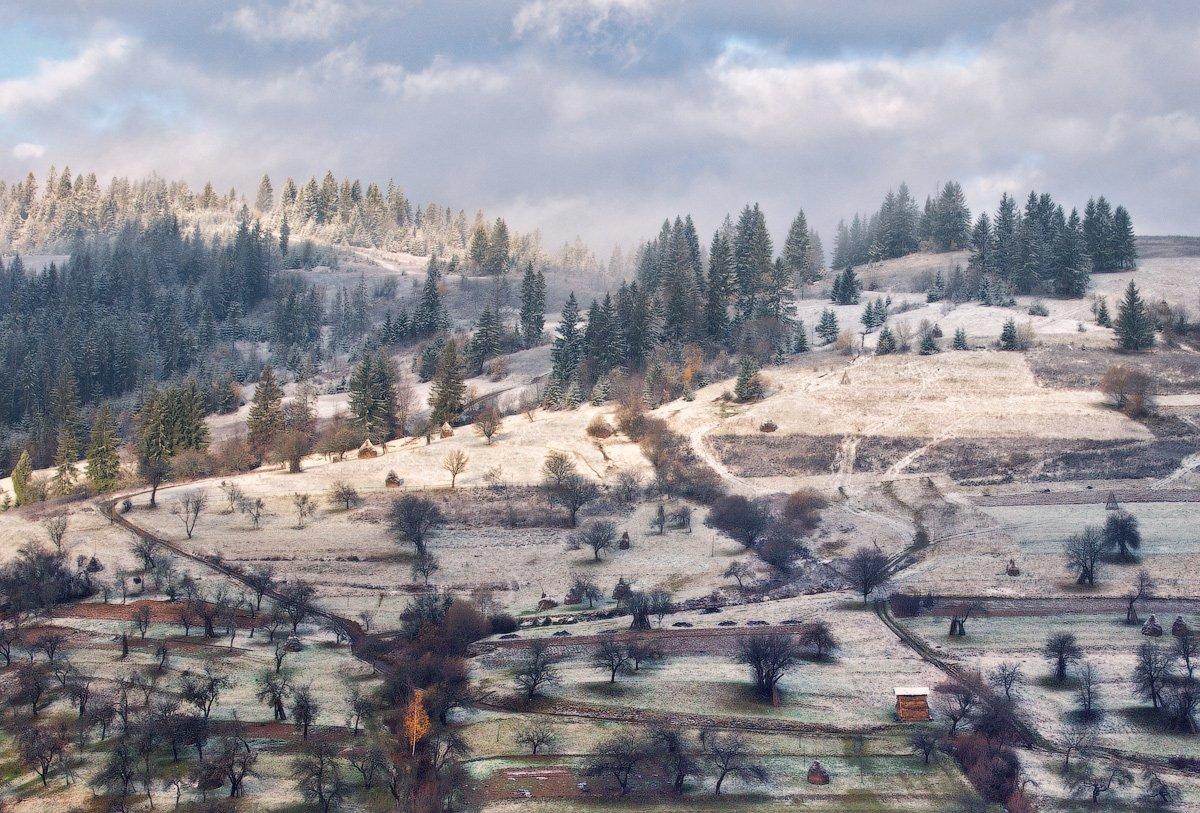 карпаты, утро, деревня, сад, Андрей Радюк