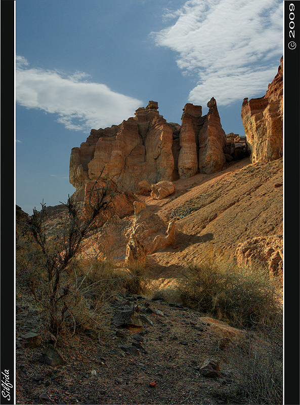 В лоне каньона сохранилась роща реликтового вида ясеня, пережившего эпоху оледенения — ясеня согдийского. Другая подобная роща есть только в Северной Америке.