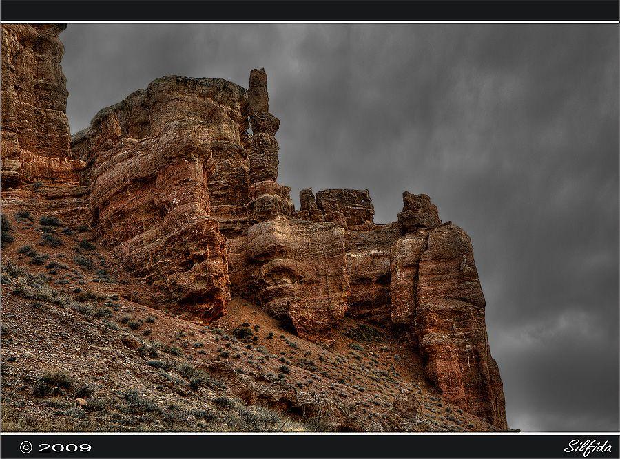 Ландшафтное разнообразие Чарынского каньона обуславливает многообразие флоры и фауны. Здесь произрастает более 1500 видов растений, 17 из которых занесены в Красную книгу Казахстана и 62 вида млекопитающих, 103 вида гнездящихся птиц, 25 видов рептилий.