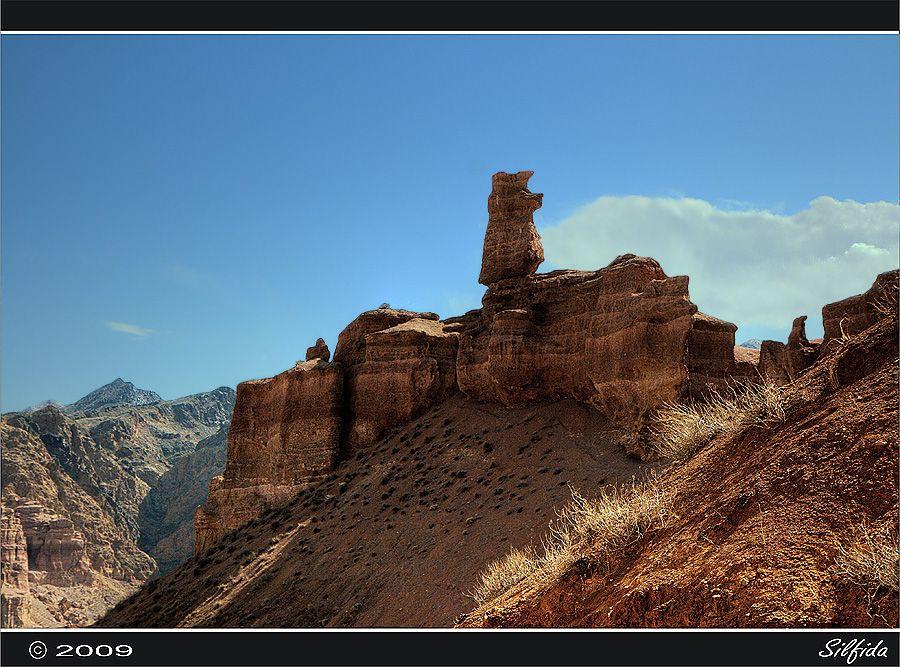 """С 2005 года на территории Чарынского каньона и Ясеневой рощи был образован """"Чарынский государственный национальный природный парк"""" - особо охраняемая природная территория - заповедник."""
