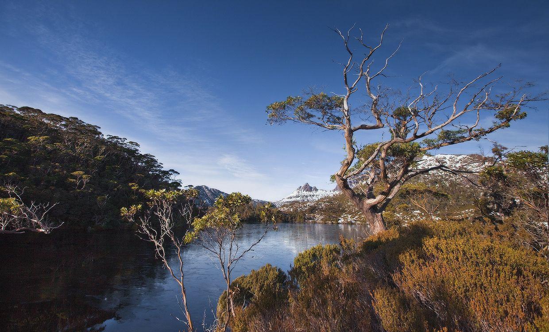 2. Несмотря на его небольшую площадь (около 68 тыс. км2) заслуживает специального рассмотрения, так как обладает некоторыми своеобразными, «неавстралийскими» чертами природы: влажность климата, густота речной сети и лесистость