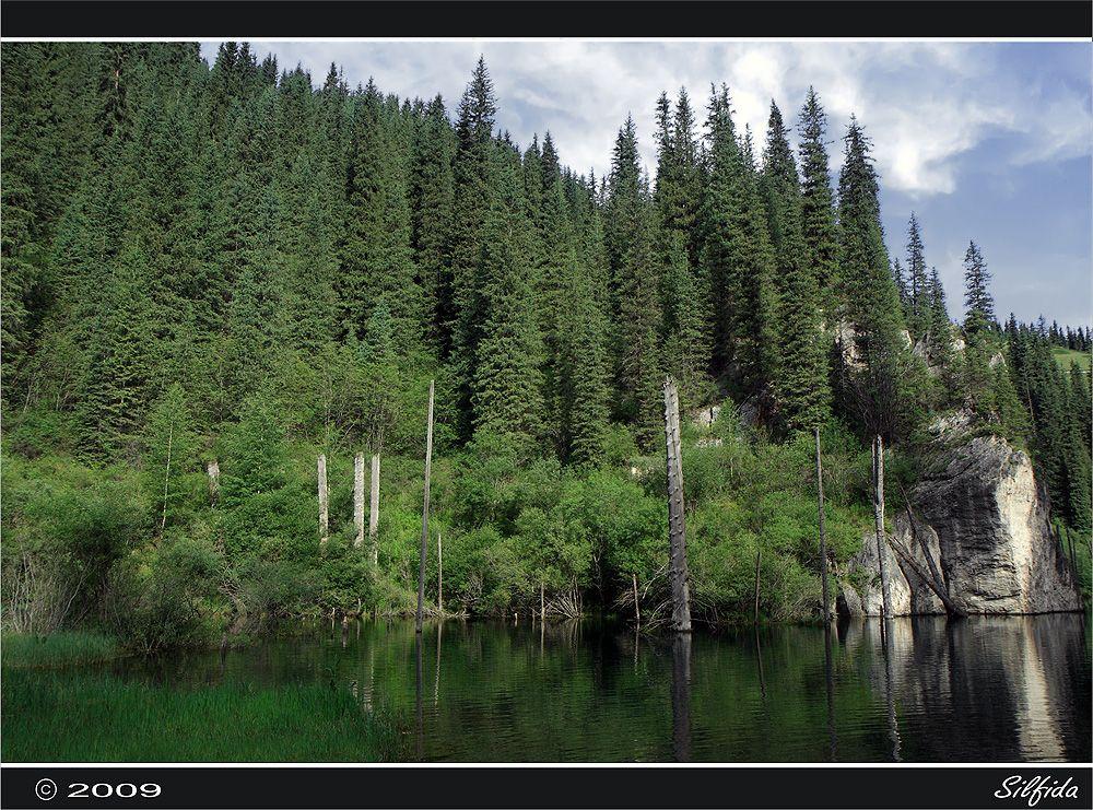 В переводе с казахского, «Каинды» означает «изобилующее березами». Возможно, озеро назвали Каинды из-за большой березовой рощи, которая расположена в пяти километрах от него.
