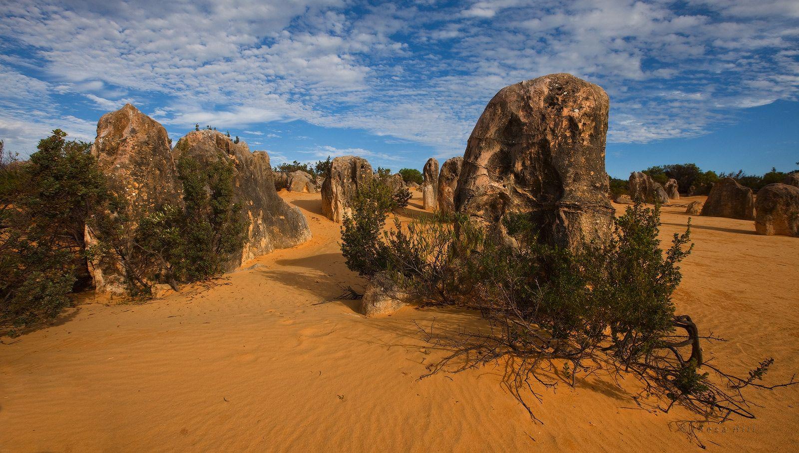 1. Это чудо австралийской природы находится в национальном парке Nambung, что в 245-ти километрах к Северу от Перта. Национальный парк Nambung был назван по имени реки, извивающейся по территории парка и исчезающей в недрах известняковых пещер.