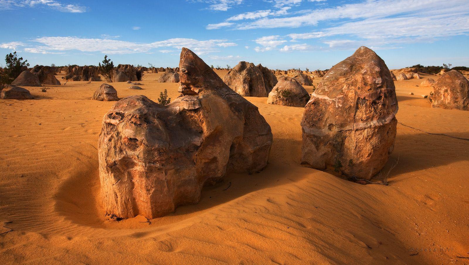 3. Что же такое Pinnacle Desert ? Это какаие-то сверхъестественные, довольно хрупкие образования из известняка в виде башенок, которые спонтанно разбросаны по огромной территории желто-оранжевых песчаных дюн.