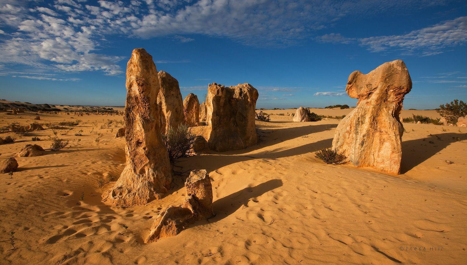 6. Как же образовались эти башенки? Определенной версии нет, но ученые склоняются к тому, что когда-то Pinnacle Desert была дном океана. Когда океан отступил на слой известняка наносился слой почвы, а вода, ветер, корни растений, размягчающие известняк сделали свое дело и образовалось такое вот чудо природы. Археологи утверждают, что всего лишь 6000 лет назад на территории пустыни жили люди