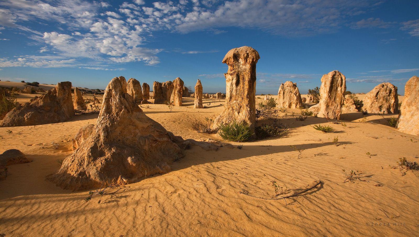 7. Общественности о Pinnacle Desert стало известно совсем недавно, в конце 60-х годов прошлого столения.