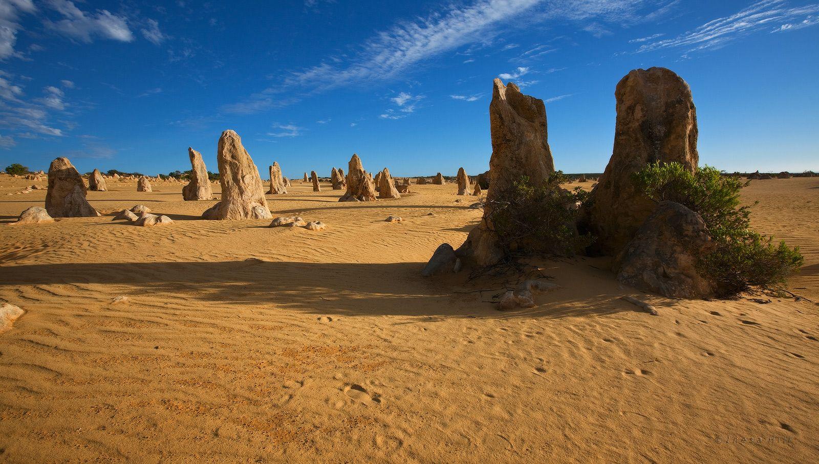 9. Что интересно, Пустыню башенок со всех сторон окружают дюны из белого песка и только на самой территории Pinnacle Desert песок сочного желто-оранжевого цвета. Совсем близко к Западу от Pinnacle Desert, примерно в 1,5-2-х километрах, простирается Индийский океан