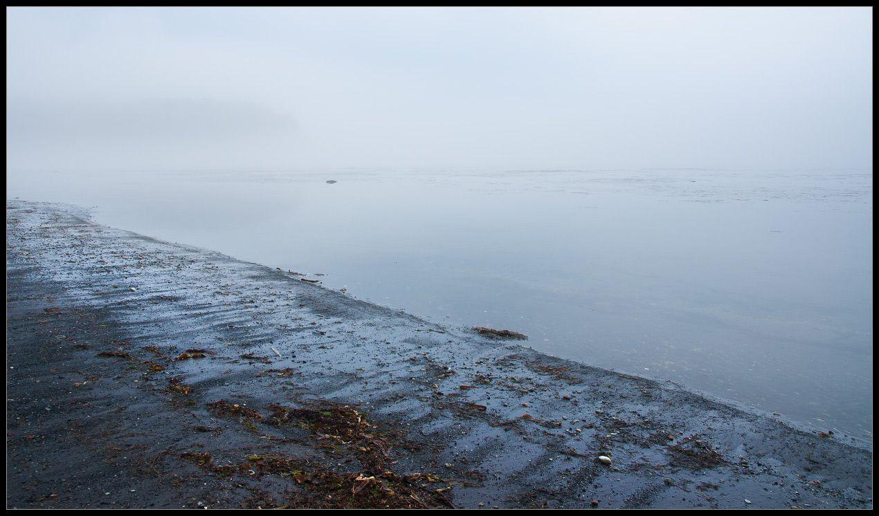 Тихий берег...
