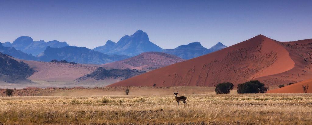 Местность медленно поднимается на восток от океанского берега до уровня примерно 900 метров возле подножья континентального плато.