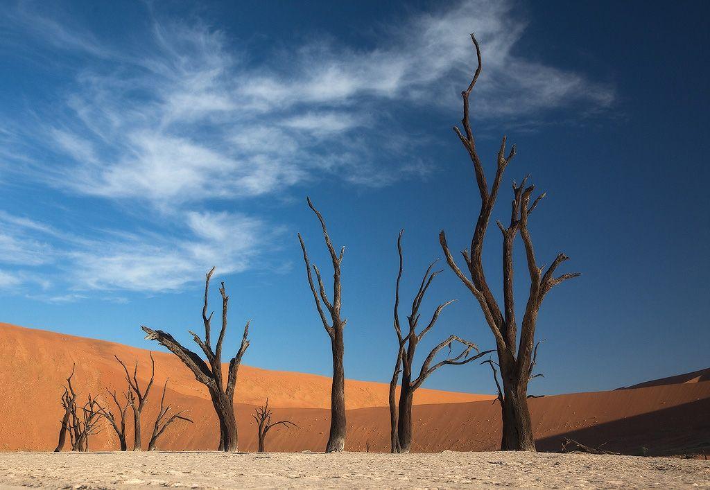 Ночью во внутренних областях пустыни температура иногда опускается до нуля.