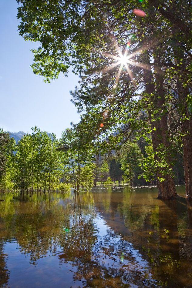 6.Реки Туоломни и Мерсед, берущие своё начало в верховьях гор на территории парка, вырезали речные каньоны глубиной от 900 до 1200 м глубины. А весной и ранним летом образуют огромные разливы.
