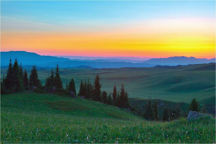 06. Табан-Карагой. Вершина мира  •   Ниточка-Чилик  •  Разряженный воздух  •  Ели  •  Трава  •  Цветы  •  Космос  •