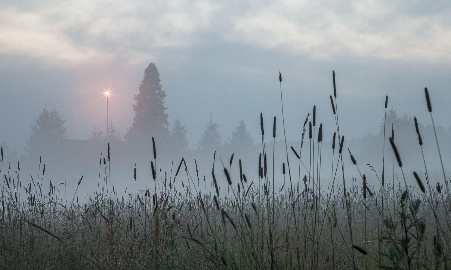 4. Внезапно тумана еще заметно прибавилось...